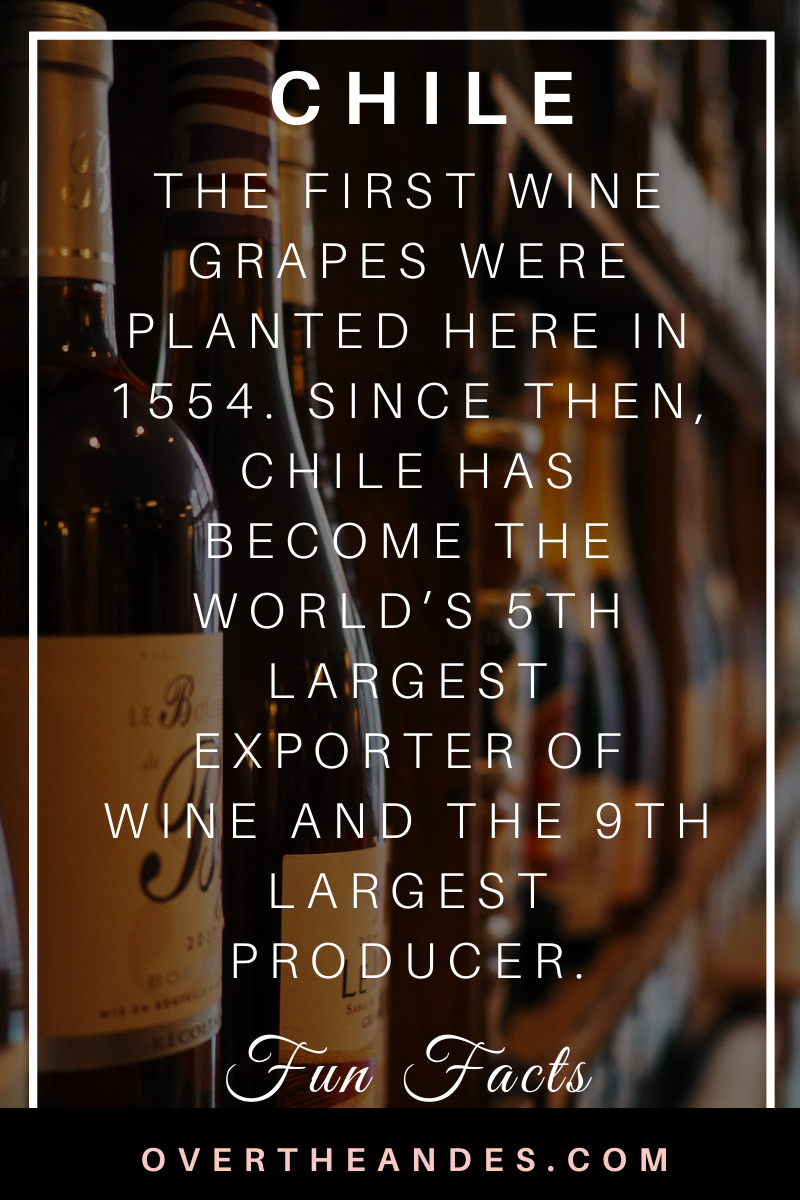 Chile Wine Fun Fact